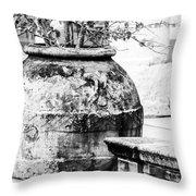 Large Flowerpot - Black And White Throw Pillow