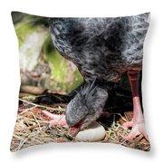 Large Gray South American Nesting Bird Rotating Egg Throw Pillow
