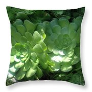 Large Green Succulent Plants Throw Pillow