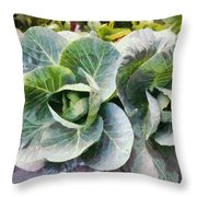 Large Leaves Of A Cabbage Plant Throw Pillow