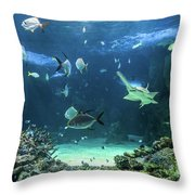 Large Sawfish And Other Fishes Swimming In A Large Aquarium Throw Pillow