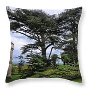Large Trees At Chateau De Chaumont Throw Pillow
