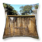 Large Water Fountain Throw Pillow
