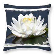Large Water Lily With White Border Throw Pillow