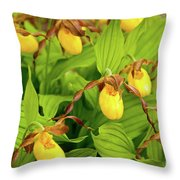 Large Yellow Lady's Slipper  Throw Pillow