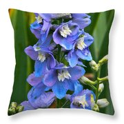 Larkspur And Lady Friend Throw Pillow