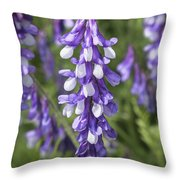 Larkspur Throw Pillow