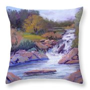 Larsen Falls Throw Pillow