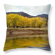Las Animas Fall Throw Pillow