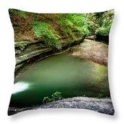 Lasalle Canyon Pool Throw Pillow