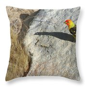 Lassen Volcanic National Park - Sulfur Works Throw Pillow by Christine Till