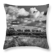 Last August 2015 Bw Throw Pillow