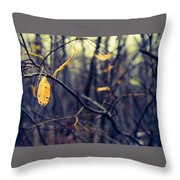 Last Bit Of Fall Throw Pillow