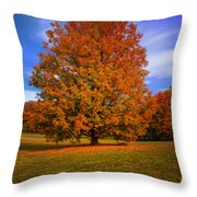 Last Call Of Fall Throw Pillow