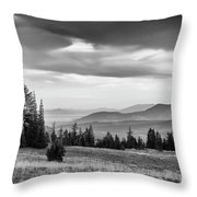 Last Light Of Day In Bw Throw Pillow