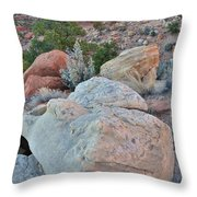 Last Light On Reef Throw Pillow