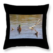 Last Mallard Of Autumn         October       Indiana    Throw Pillow