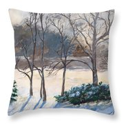 Last Night's Snow Throw Pillow by Elizabeth Lane