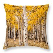 Last Of The Aspen Leaves Throw Pillow