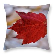 Last Of The Leaves Nature Photograph Throw Pillow