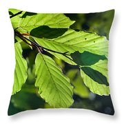 Last Of The Summer Leaves Throw Pillow