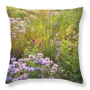 Last Rays Of Sun Light Wildflowers In Moraine Hills Sp Throw Pillow