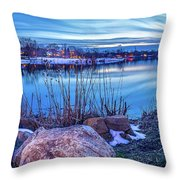 Last Rays Of Winter Throw Pillow
