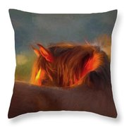 Last Remaining Light Of The Day Throw Pillow