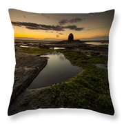 Last Shot Of The Day Throw Pillow