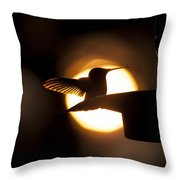 Last Sip At Sunset Throw Pillow
