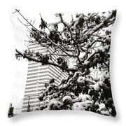 Last Snow Fall  Throw Pillow