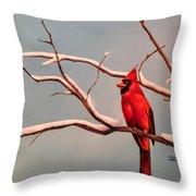 Last Snow Of Winter, Cardinal Throw Pillow