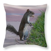 Last Squirrel Standing Throw Pillow
