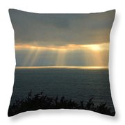 Last Sunbeams Of The Day Two Throw Pillow