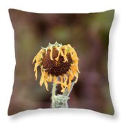Last Sunflower Throw Pillow