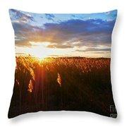 Last Sunset, Plum Island Throw Pillow