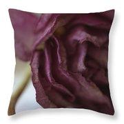 Lasting Goodness Throw Pillow