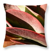 Late Afternoon 1 Throw Pillow