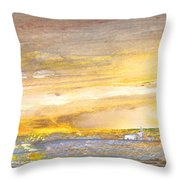 Late Afternoon 26 Throw Pillow