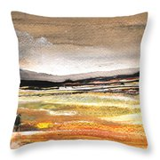 Late Afternoon 27 Throw Pillow