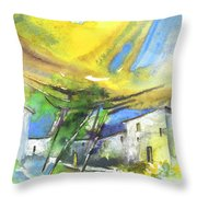 Late Afternoon 28 Throw Pillow