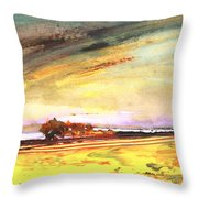 Late Afternoon 31 Throw Pillow