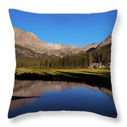 Late Afternoon At Mcclure Meadow Throw Pillow
