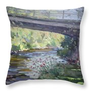 Late Afternoon At Mcnab Park Throw Pillow