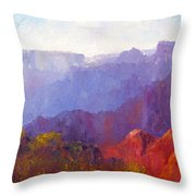 Late Afternoon Light Throw Pillow
