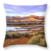 Late Afternoon Rain Throw Pillow