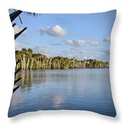 Late Afternoon Sunlight II Throw Pillow