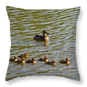 Late Afternoon Swim Throw Pillow