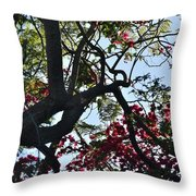 Late Afternoon Tree Silhouette With Bougainvilleas I Throw Pillow