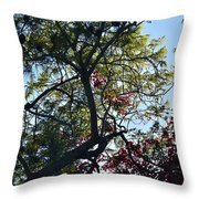 Late Afternoon Tree Silhouette With Bougainvileas II Throw Pillow